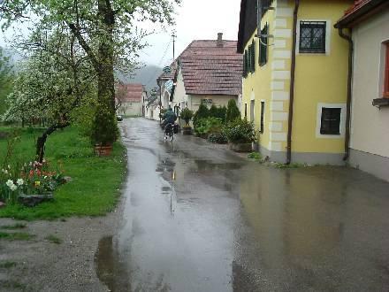 Oostenrijk boomgaarden - regen