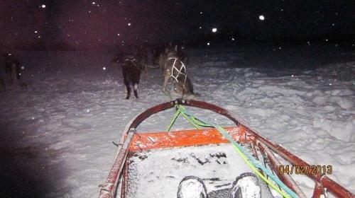 Husky safari Tromso